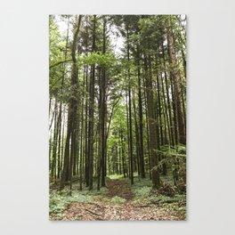 lost? Canvas Print