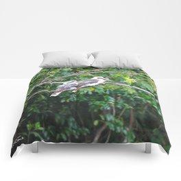 Kookaburras Comforters