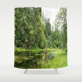 Hoh Rainforest Scene Shower Curtain