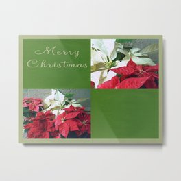 Mixed color Poinsettias 3 Merry Christmas Q5F1 Metal Print
