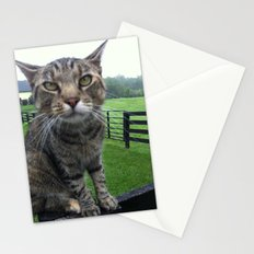 Cat on a Fence Stationery Cards