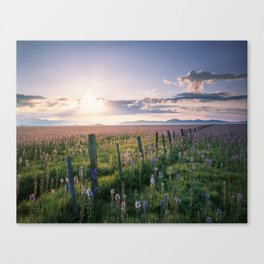 Camas Marsh Sunrise Canvas Print