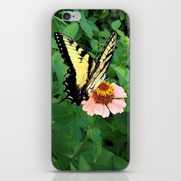 Butterfly on Zinnia 4 iPhone Skin