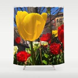 Yellow Tulip Original Photograph Shower Curtain