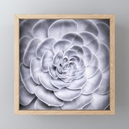 Succulent Framed Mini Art Print