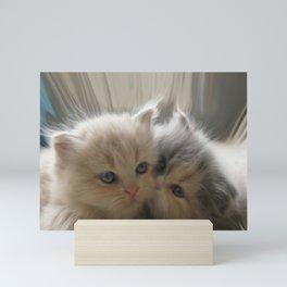 Kitten Kiss Mini Art Print