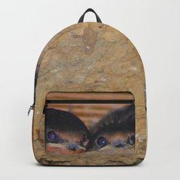 Baby Barn Swallows Backpack