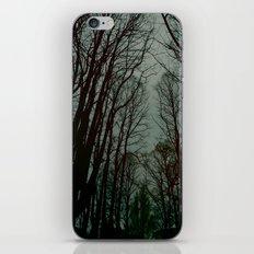rami iPhone & iPod Skin
