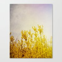 coldplay Canvas Prints featuring And it Was All Yellow by Olivia Joy StClaire