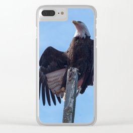 Alaskan Eagle Photography Print Clear iPhone Case
