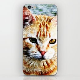 Young Yellow Cat iPhone Skin