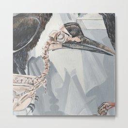 Hornbill Skeleton Museum Display Metal Print