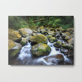 Oneonta Creek Cascades Metal Print