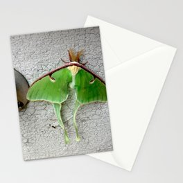 XVI Stationery Cards