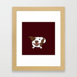 Celia Mae The Pit Bull Framed Art Print