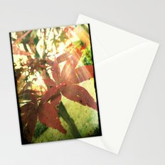 Autumn's Brilliance Stationery Cards