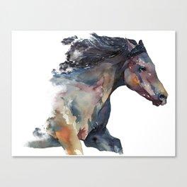 Horse #9 Canvas Print