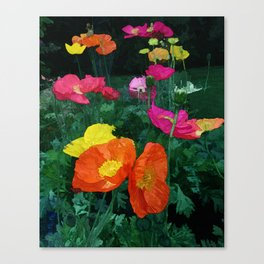 Poppies Two Canvas Print