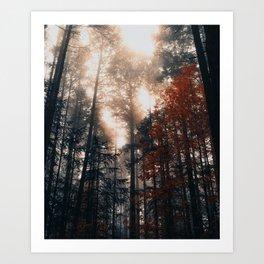 Let the Light In Art Print