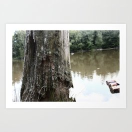 Old Tree at Lake Art Print