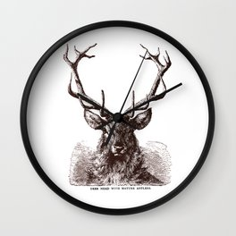 Mature Antlers Wall Clock