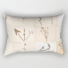 Vintage Herbarium Botanical Collection 1860 Rectangular Pillow