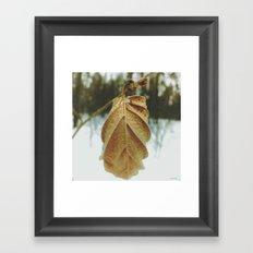 little wonders of winter Framed Art Print