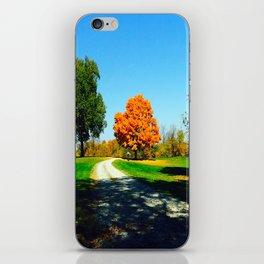 Elysium Lane iPhone Skin
