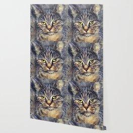 Cat Alex #cat #cats #kitty Wallpaper