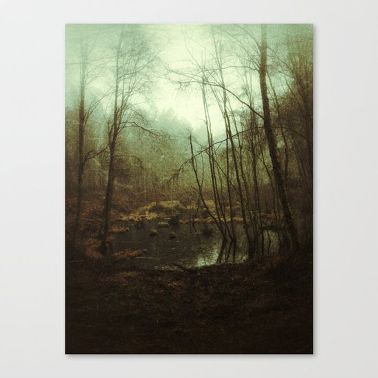 SWAMPY FOREST (everyday 01.01.17) Canvas Print