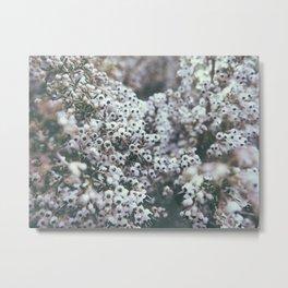 Floral Purple Metal Print