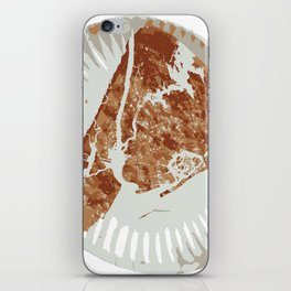 Pizza Map iPhone Skin