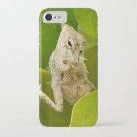 lizard iPhone & iPod Cases featuring Lizard by Bonjourik