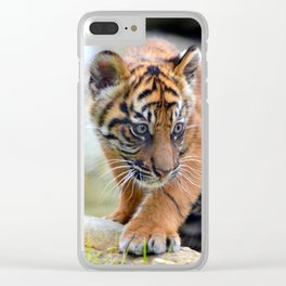 Curious Kinleigh Clear iPhone Case
