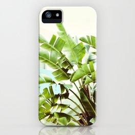 Banana Palms iPhone Case