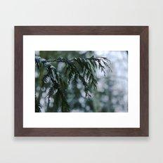 Winter Rain Framed Art Print