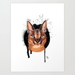 caracal Art Print
