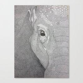 A mazing elephant II Canvas Print