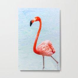 Pink Flamingo, Blue Ocean Metal Print