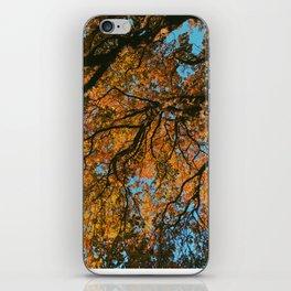 Falling Up iPhone Skin