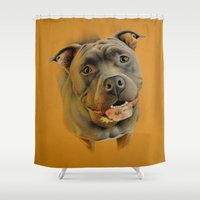 bull terrier Shower Curtains featuring American pit bull terrier by Frederica Morgan