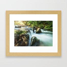 River, Biodiversity Atlantic Forest Framed Art Print