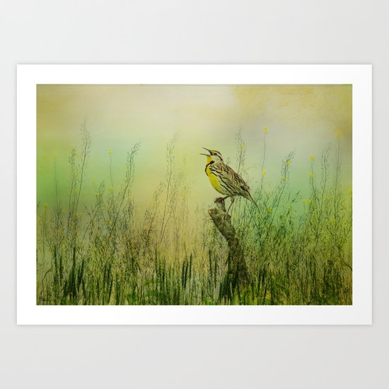 The Meadow Lark Sings Art Print