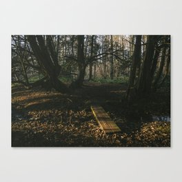 Footbridge and Yew trees along the Nar Valley Way. Narford, Norfolk, UK. Canvas Print