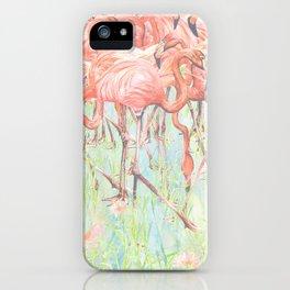 Flamingo Meadow iPhone Case