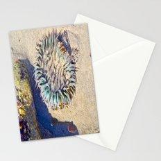 Jellin' Stationery Cards