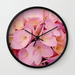 Hydrangea Macro Peach Pink Wall Clock