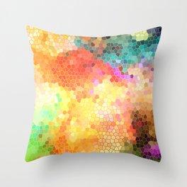 Rainbow Sherbert Throw Pillow