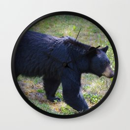 Black bear on the move in Jasper National Park | AB Wall Clock