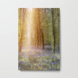 Sunlight and Bluebells Metal Print